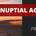 Prenuptial Agreements—Not Just for Protecting Wealth